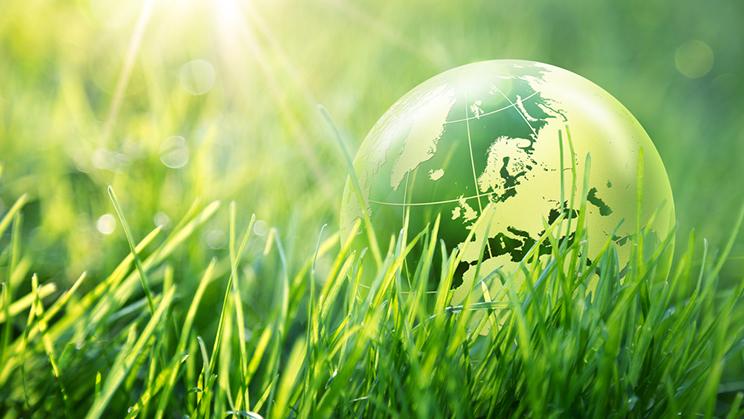 Responsabilidad medioambiental en las empresas